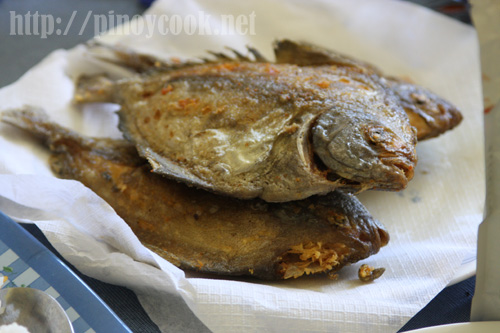 A typical lunch in roxas city casa veneracion for Pompano fish good to eat