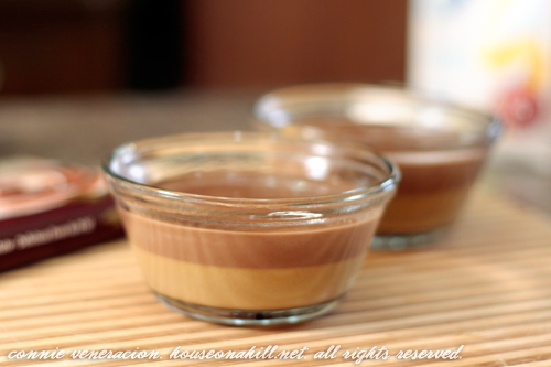 Chocolate and coffee panna cotta