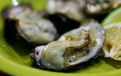 oysters-half-shell