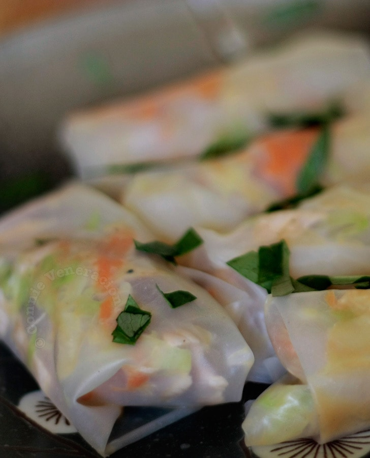 Tuna and cabbage spring rolls