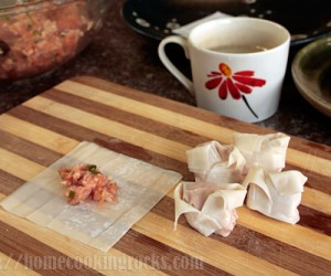 how-to-wrap-wontons9