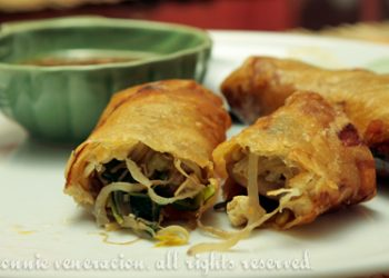 tofu-vegetable-spring-rolls-5