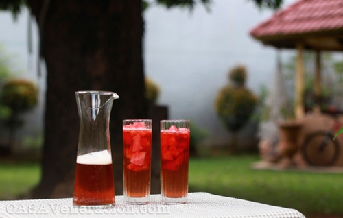 watermelon-iced-tea