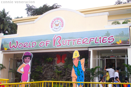 rance to the World of Butterflies in Marikina City