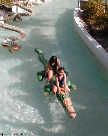 the crocodile ride