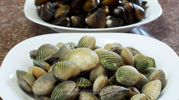 casaveneracion.com How to clean mussels and clams