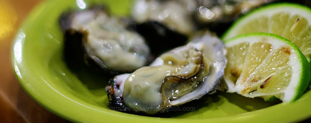 Oysters on the half shell | casaveneracion.com