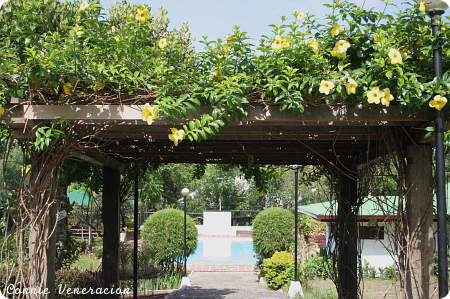 an arc of flowers leading to the swimming pool at Balay Indang