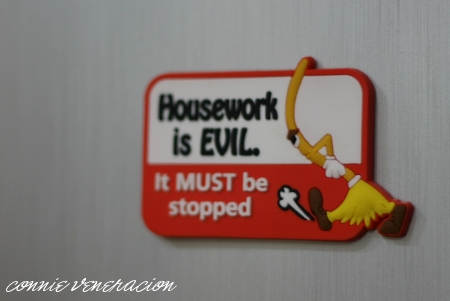 housework is evil -- it must be stopped