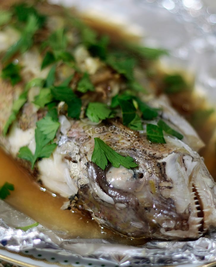 Steamed fish with oyster sauce