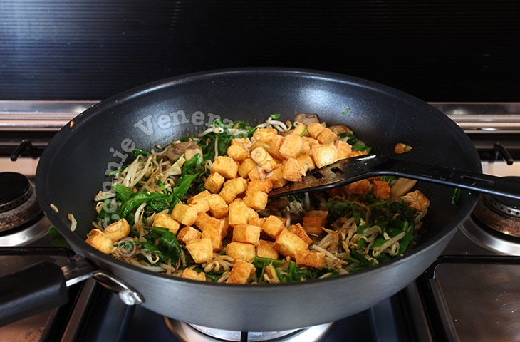 Tofu and mushrooms with bean sprouts and spinach