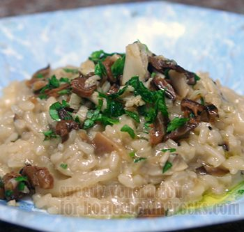 Risotto with grilled oyster and shiitake mushrooms
