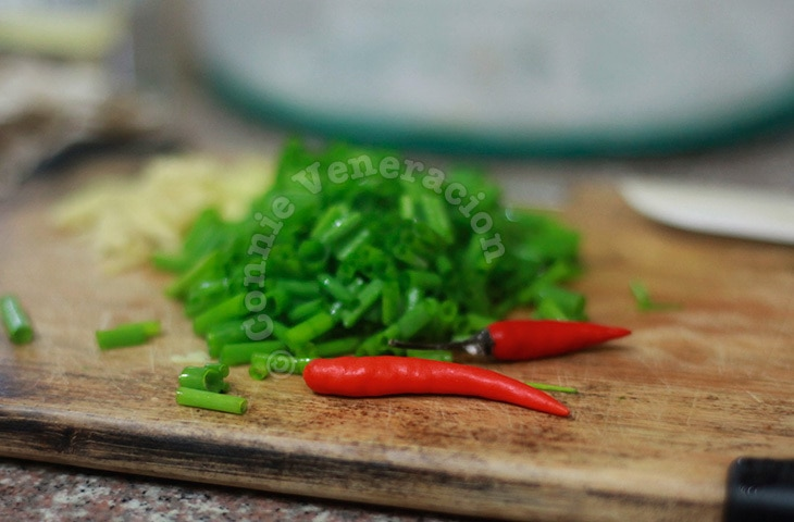 Scallions and chilies for Chinese-style braised beef