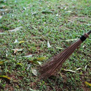 We sweep dead leaves in the garden with coconut fronds