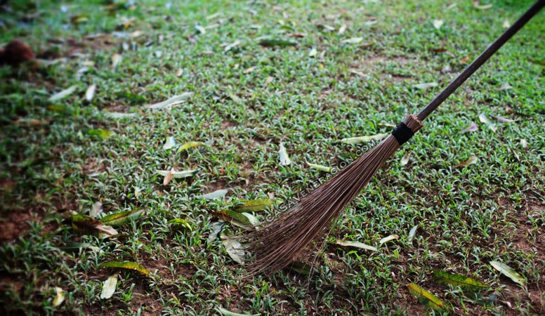 We sweep dead leaves in the garden with coconut fronds   casaveneracion.com