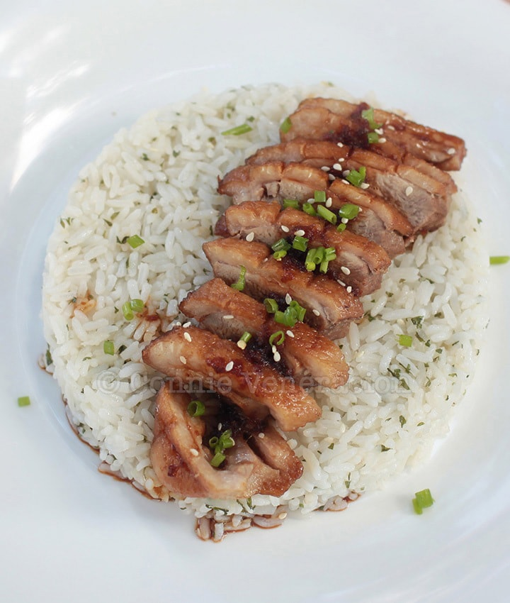 Duck breast in teriyaki sauce