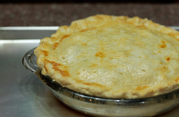 Chicken Pot Pie (Pastel de Pollo)