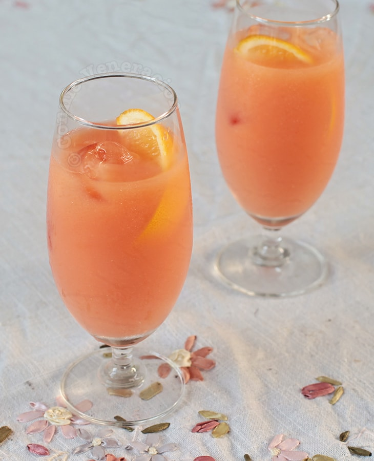 Campari Orange Cocktail