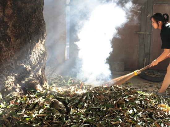 """Use Your Vacuum Cleaner to """"Sweep"""" Fallen Leaves in the Garden"""