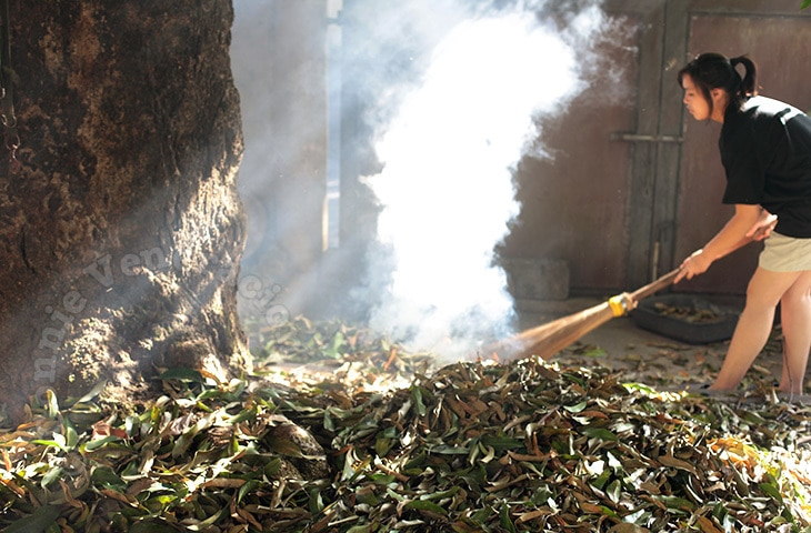 """Use Your Vacuum Cleaner to """"Sweep"""" Fallen Leaves in the Garden 