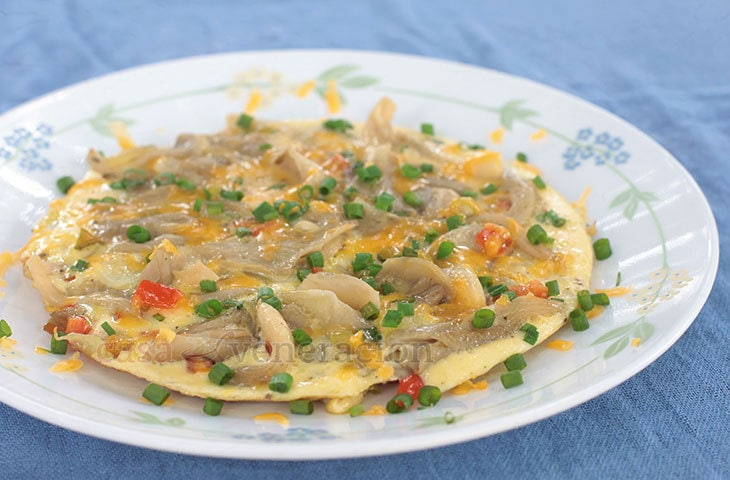 The delicate flavor of oyster mushrooms and the sweetness of bell pepper make this mushroom and pepper frittata a delightful first meal for the day. Sharp cheddar adds a surprising kick and scallions provide a light crunch.