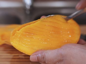 Summer in the tropics can be terribly humid but there's one thing that makes the punishing temperature bearable. It's mango season in the Philippines and it looks like the tree in our garden will be showering us with fruits. Here is a list of my favorite sweet and savory dishes that include mango among the ingredients.