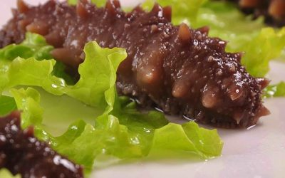 Marine animals shaped like cucumber, sea cucumbers are harvested for food. They are found in French, Portuguese, Indonesian, Malay, Filipino, Japanese and Chinese cuisines. Read a cook's guide on how to prepare and cook sea cucumbers.