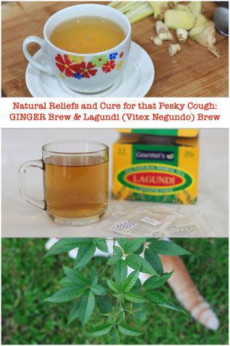 "Ginger brew relieves coughing but it is not a cure. Lagundi (Vitex Negundo) is a cure for cough. Learn how to plant langundi tree and make lagundi ""tea"" (brew)."