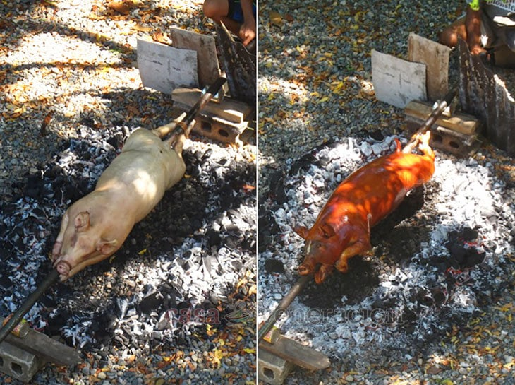 Brushing the skin of the pig with annatto oil gives lechon its distinctive color