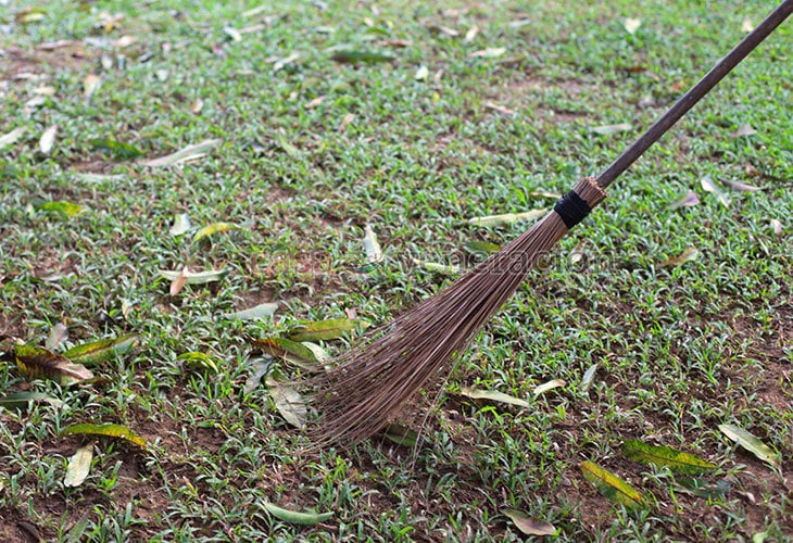Broom made with coconut fronds (walis tingting)