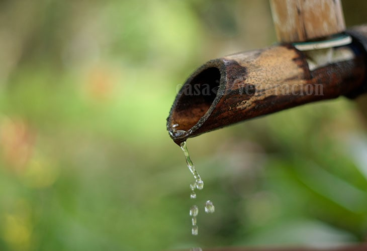 Collecting water from a spring with a bamboo spout