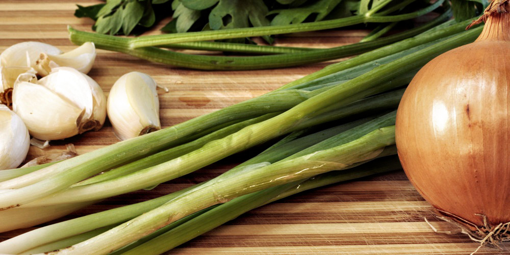 Shallots, scallions, spring onions and leeks, the differences: illustrated and explained | casaveneracion.com